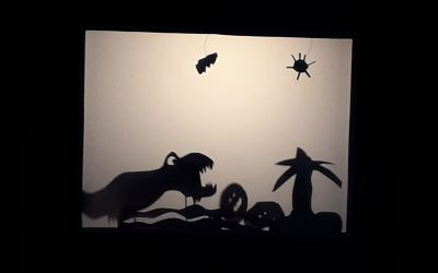 Zauberhafte Schattenspiele